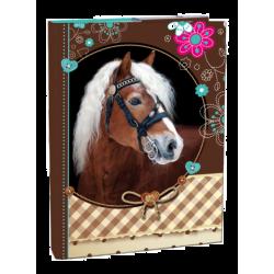 Dosky A4 školské + BOX STIL s klopou Sweet Horse