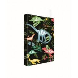 Dosky A5 školské + BOX KARTON Jumbo Dino druhy