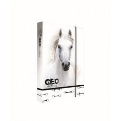 Dosky A5 školské + BOX KARTON Jumbo GEO WILD kôň 5-73719