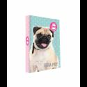 Dosky A4 školské + BOX KARTON ISHA - My love Pet
