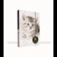 Dosky A4 školské + BOX KARTON Mačka