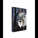 Dosky A4 školské + BOX KARTON Vlk