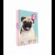 Dosky A5 školské + BOX KARTON ISHA - My love Pet