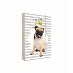 Dosky A5 školské + BOX KARTON Pes