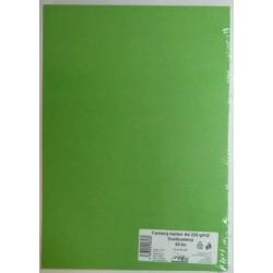 Výkresy farebné A4, 225g/50ks, zelené svetlé